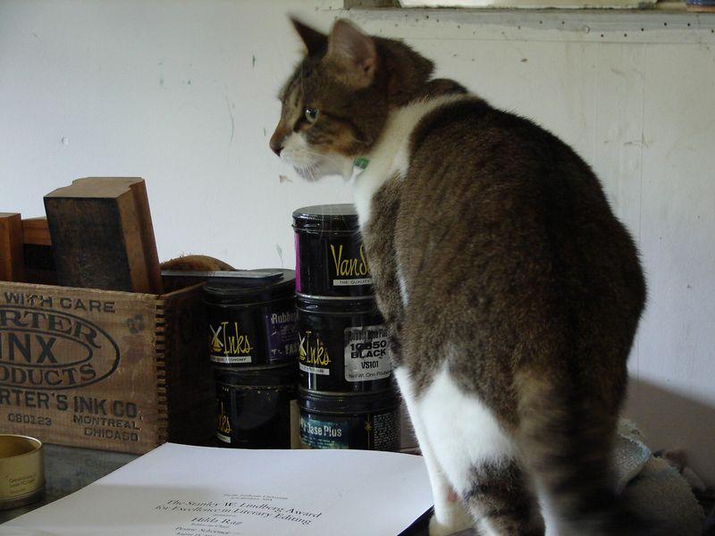 Print Shop Cat 025