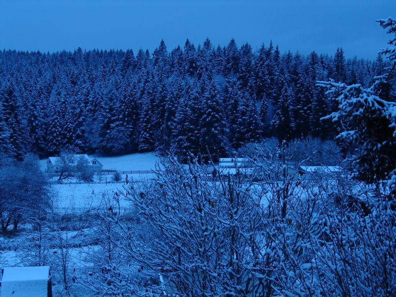 Snow days 2010 008