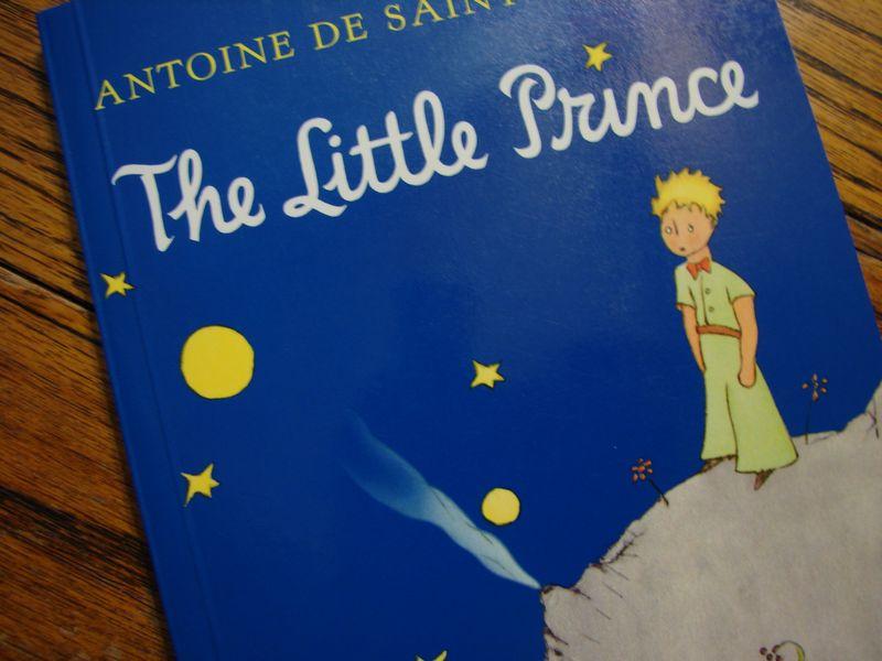 Prince 009