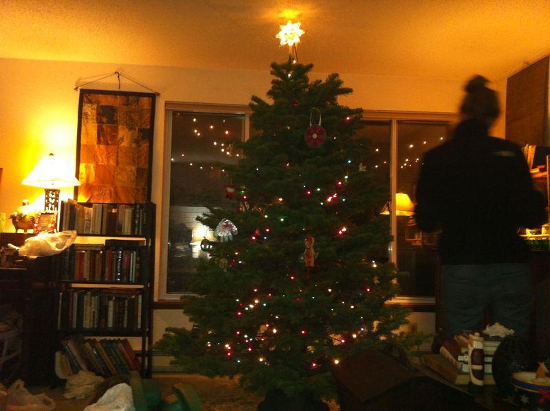 2012 christmas 017